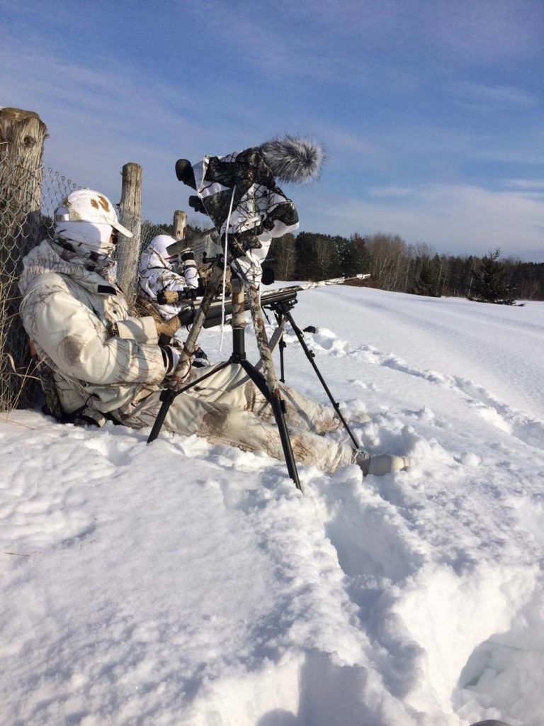 comment filmer sa chasse au coyote