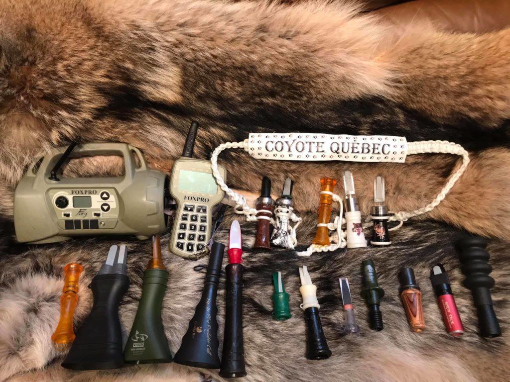 les appeaux pour la chasse au coyote