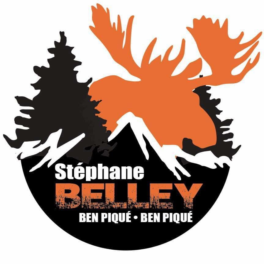 Logo Stéphane belley