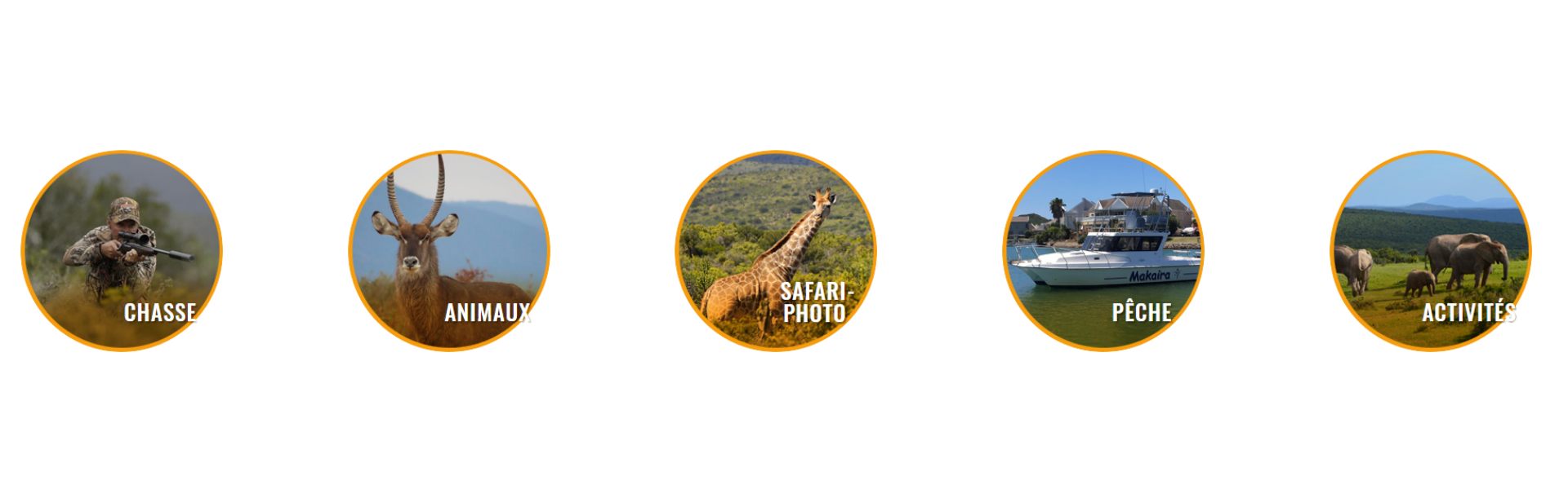 majeje africa safari