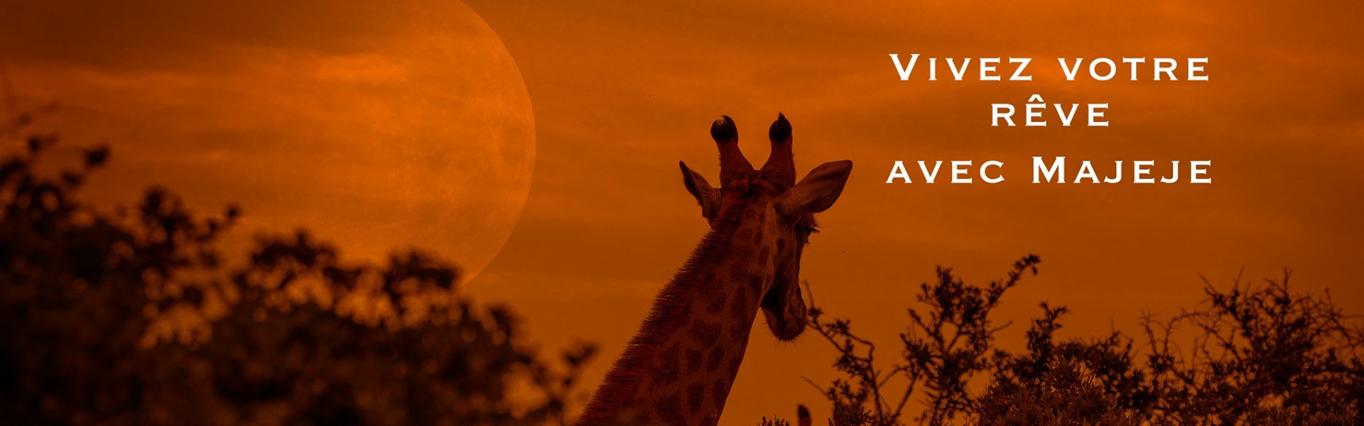 majeje africa safaris