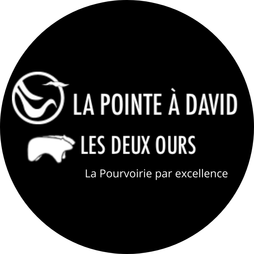 La Pointe à David