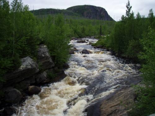 riviere pour la pêche à la truite